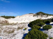 cape-san-blas-dunes-2