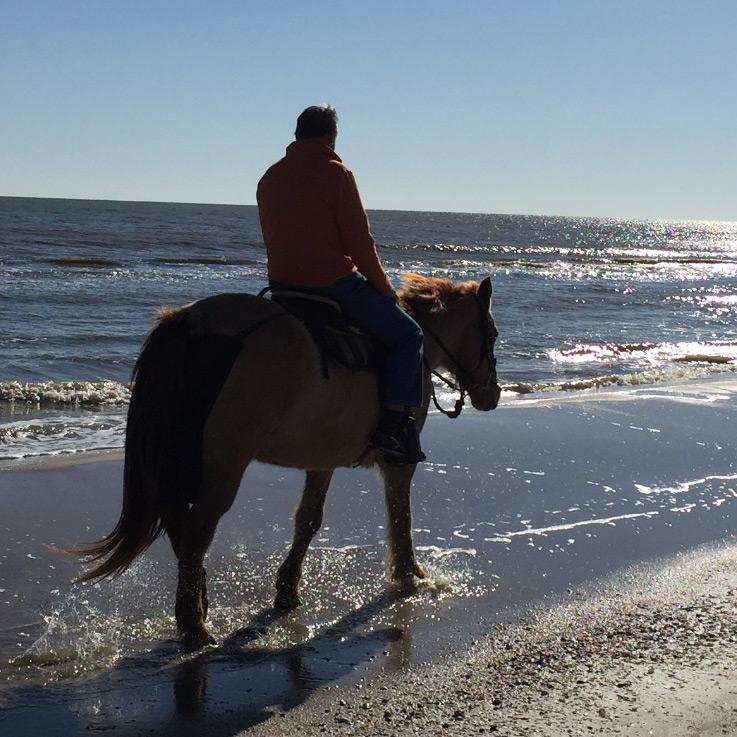 cape-san-blas-horseback-rides