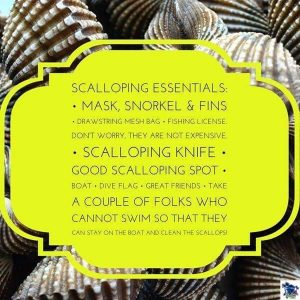 Scalloping Tips