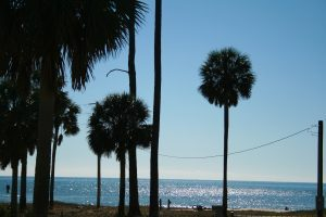 Cape San Blas has been a landmark to sailors of the Florida coast for hundreds of years.